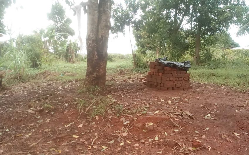 30 acres of mixed use titled land on sale at 25m per in Kalasa, Luwero along Ssemuto Road