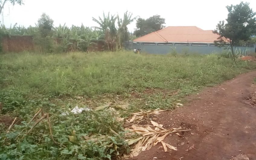 60x120ft  land with its tittle on sale at 120m in Bukasa, Kirinya near the main Road.