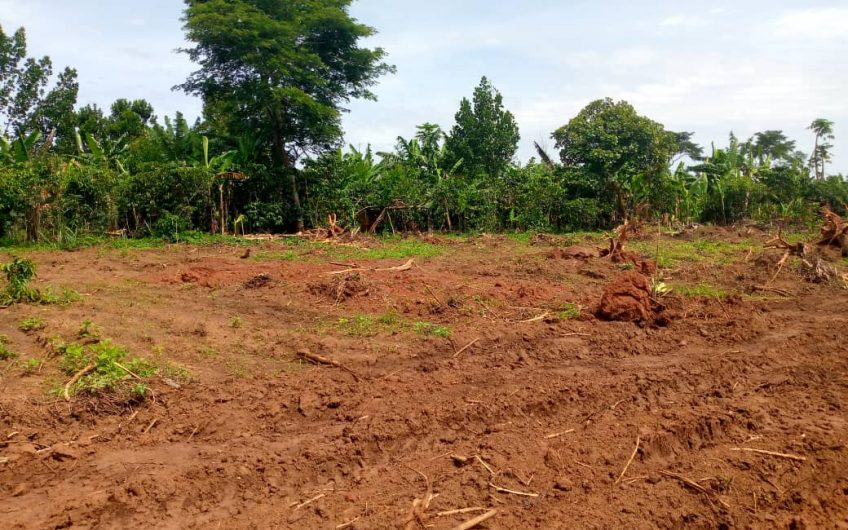 """PLOTS FOR SALE IN OUR """"GOBERO – NAMPUNGE ESTATE"""""""